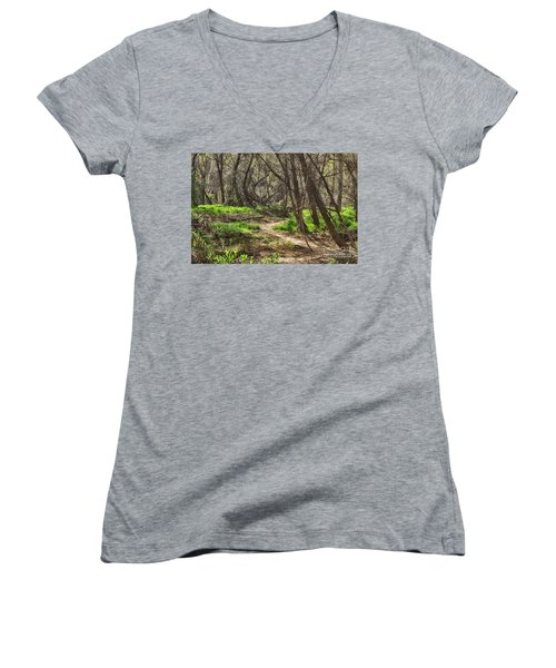 Lion Trail At Hassayampa Nature Reserve Women's V-Neck T-Shirt (Junior Cut) by Anne Rodkin