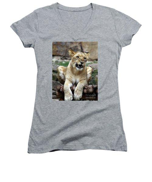 Lioness 2 Women's V-Neck T-Shirt (Junior Cut) by Inspirational Photo Creations Audrey Woods
