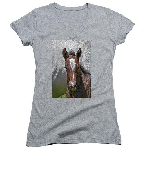 Women's V-Neck T-Shirt featuring the photograph Lipizzan Horses #2 by Stuart Litoff