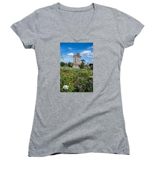 Lismore Castle Gardens Women's V-Neck T-Shirt (Junior Cut) by Martina Fagan