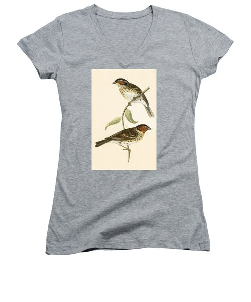 Little Bunting Women's V-Neck T-Shirt (Junior Cut) by English School