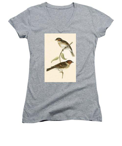 Little Bunting Women's V-Neck T-Shirt