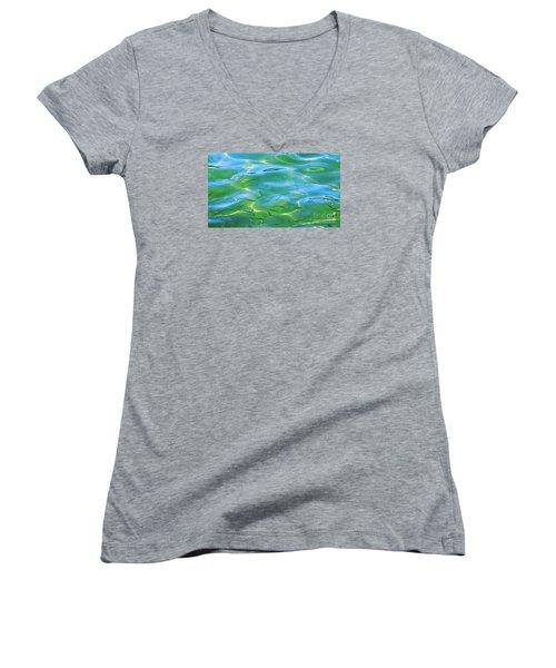 Little Fish Women's V-Neck T-Shirt (Junior Cut) by Scott Cameron