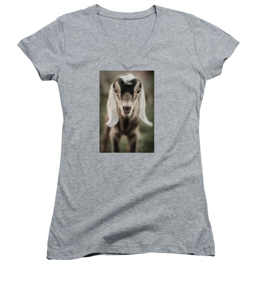 Little Goat In Color Women's V-Neck T-Shirt (Junior Cut) by Kelly Hazel