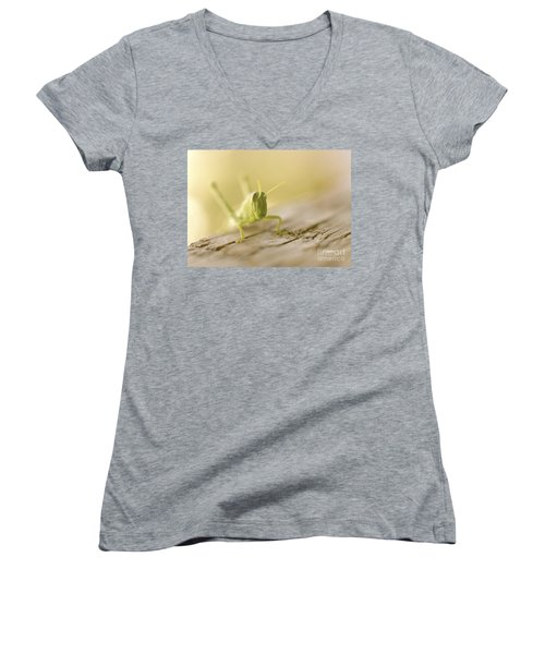 Little Grasshopper Women's V-Neck T-Shirt