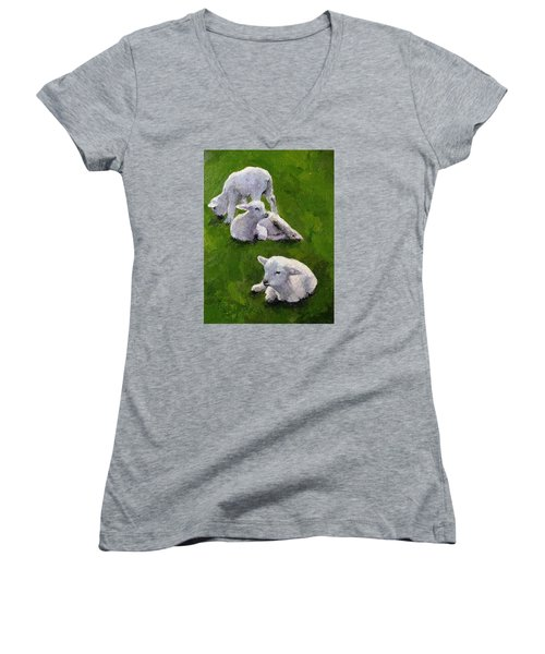 Little Lambs Women's V-Neck T-Shirt