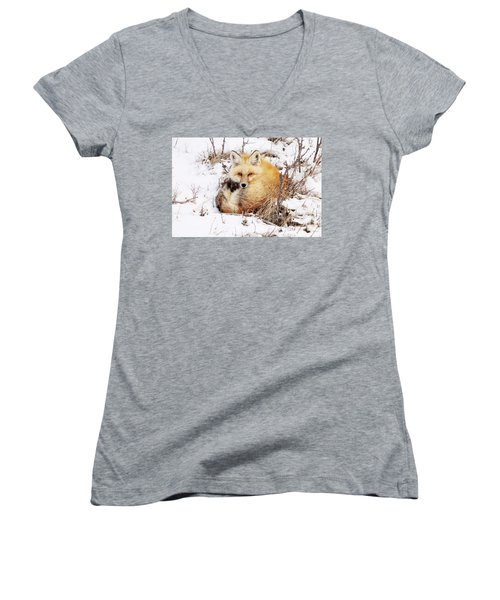 Little Red Fox Women's V-Neck (Athletic Fit)
