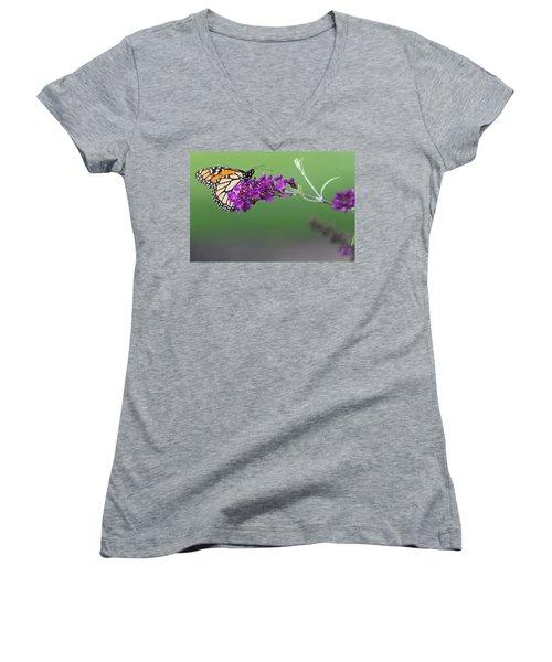 Little Wing Women's V-Neck T-Shirt