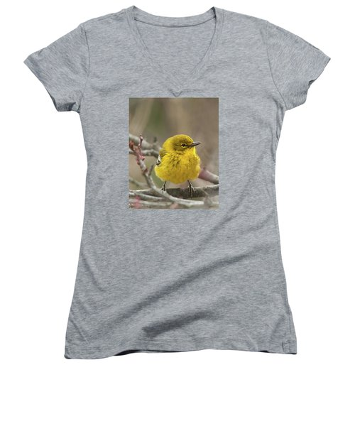 Little Yellow Women's V-Neck T-Shirt