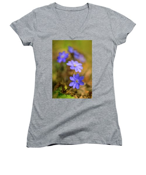 Women's V-Neck T-Shirt (Junior Cut) featuring the photograph Liverworts In The Afternoon Sunlight by Jaroslaw Blaminsky
