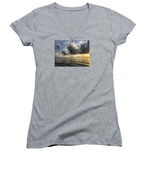Loan Pelican Women's V-Neck T-Shirt