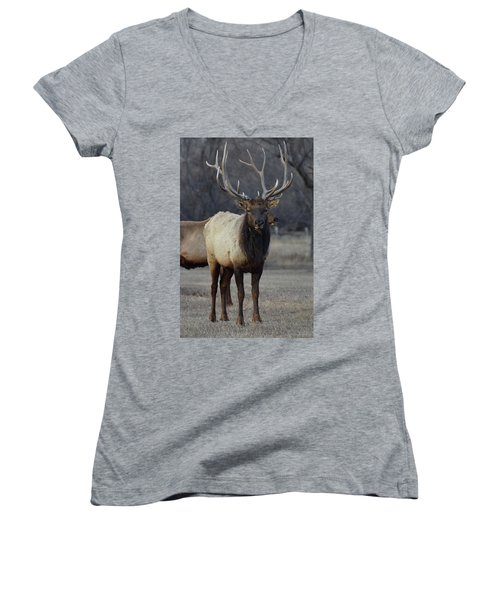 Women's V-Neck T-Shirt (Junior Cut) featuring the photograph Lone Bull by Billie Colson
