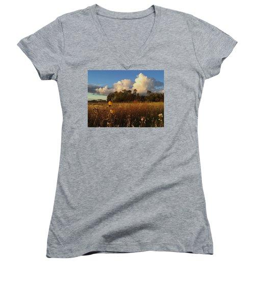 Lone Flower Women's V-Neck T-Shirt