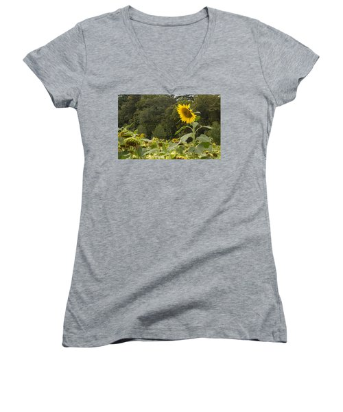 Lone Wolf Women's V-Neck T-Shirt (Junior Cut) by Arlene Carmel