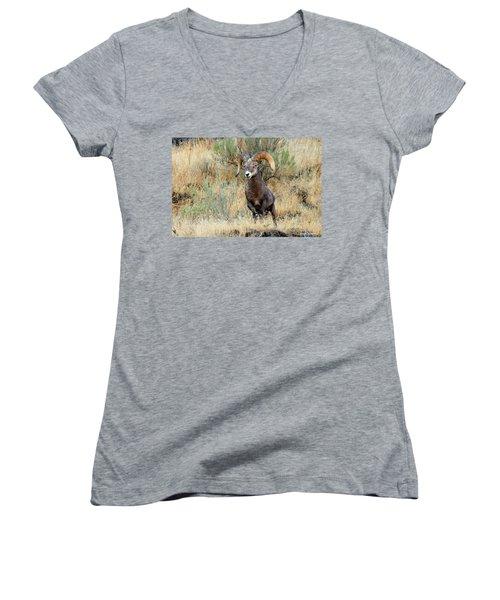 Loner IIi Women's V-Neck T-Shirt