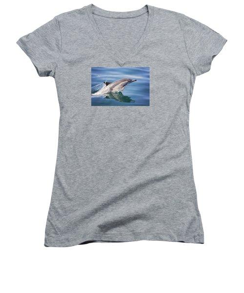 Long Beaked Common Dolphin Women's V-Neck T-Shirt