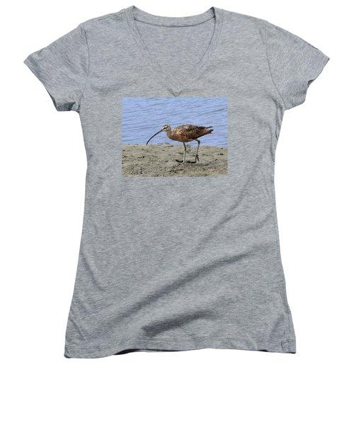 Long-billed Curlew Women's V-Neck T-Shirt