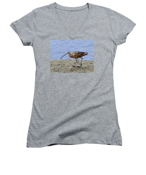 Long-billed Curlew Women's V-Neck (Athletic Fit)