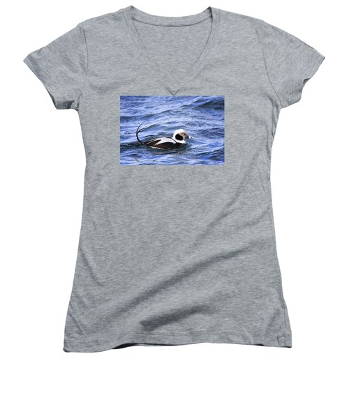 Long-tailed Duck 2 Women's V-Neck T-Shirt (Junior Cut) by Gary Hall
