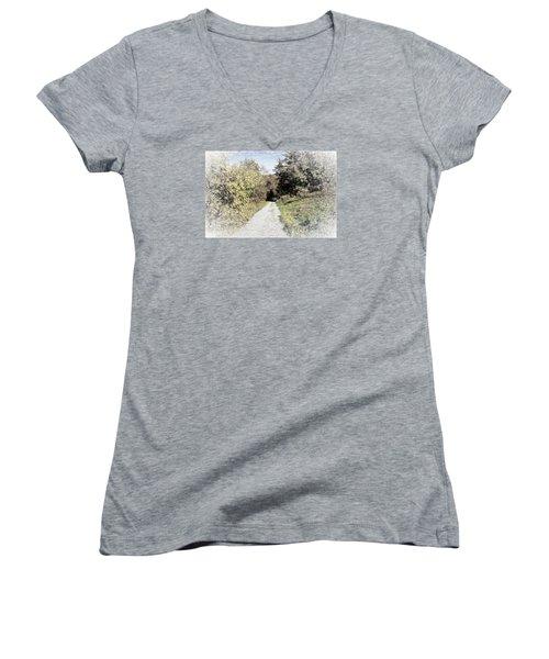 Long Trail Women's V-Neck T-Shirt (Junior Cut) by Rena Trepanier