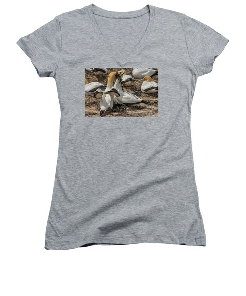 Look What I've Brought For You Women's V-Neck