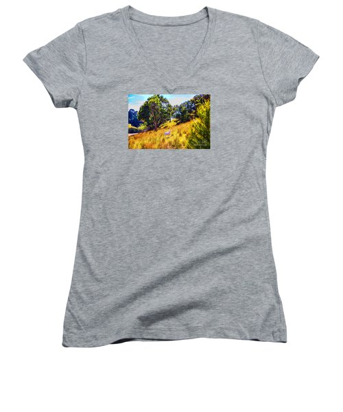 Women's V-Neck T-Shirt (Junior Cut) featuring the photograph Lost Lamb by Rick Bragan