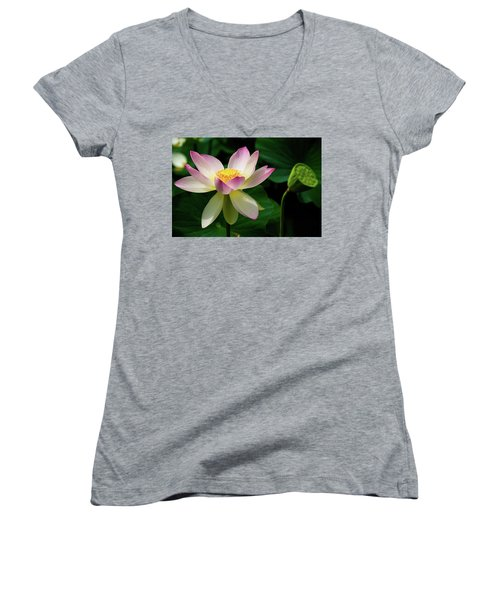 Lotus Lily In Its Final Days Women's V-Neck