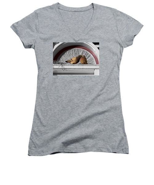 Lovebirds Women's V-Neck T-Shirt (Junior Cut) by Laurel Powell