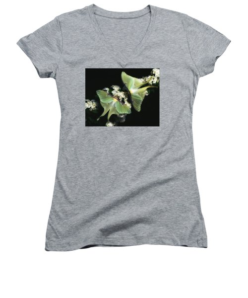 Luna Moths Women's V-Neck