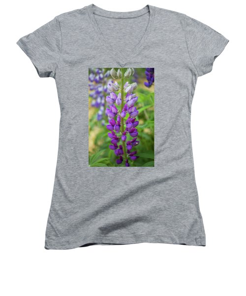 Women's V-Neck T-Shirt (Junior Cut) featuring the photograph Lupine Blossom by Robert Clifford