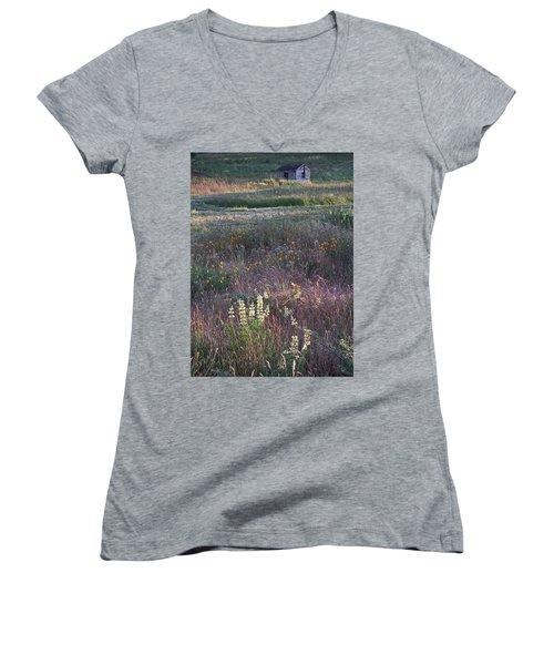 Lupine Women's V-Neck T-Shirt (Junior Cut) by Laurie Stewart