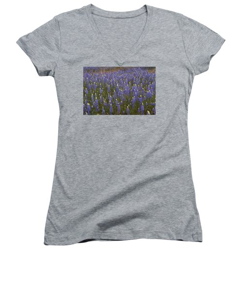 Women's V-Neck T-Shirt (Junior Cut) featuring the photograph Lupines by Doug Herr