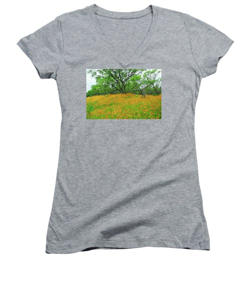 Lush Coreopsis Women's V-Neck T-Shirt (Junior Cut) by Lynn Bauer