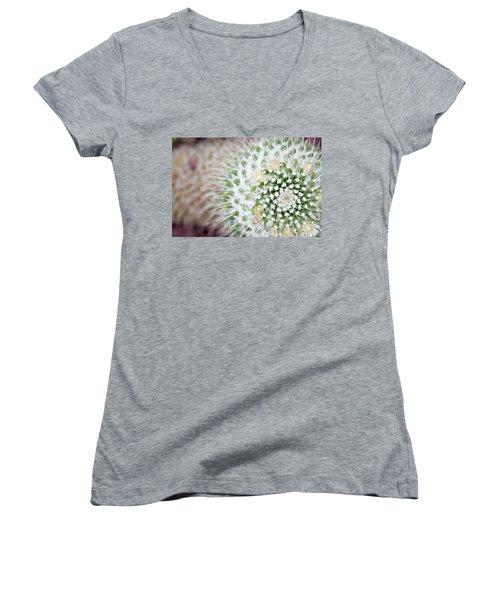 Madrid Botanical Garden 1 Women's V-Neck T-Shirt (Junior Cut) by Ana Mireles