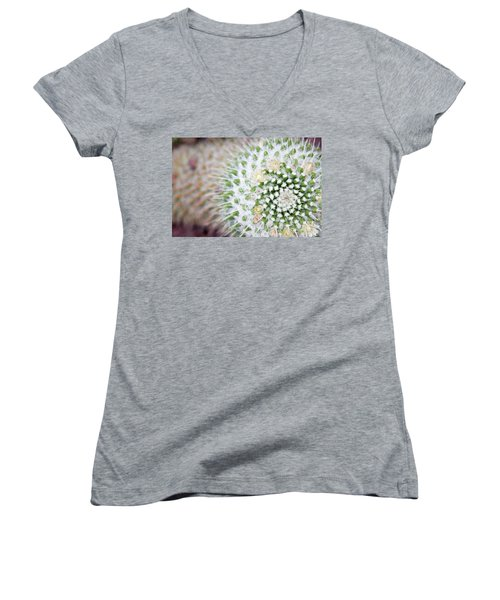 Madrid Botanical Garden 1 Women's V-Neck T-Shirt