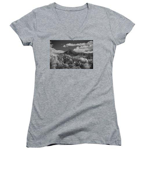 Majestic Peak Women's V-Neck T-Shirt