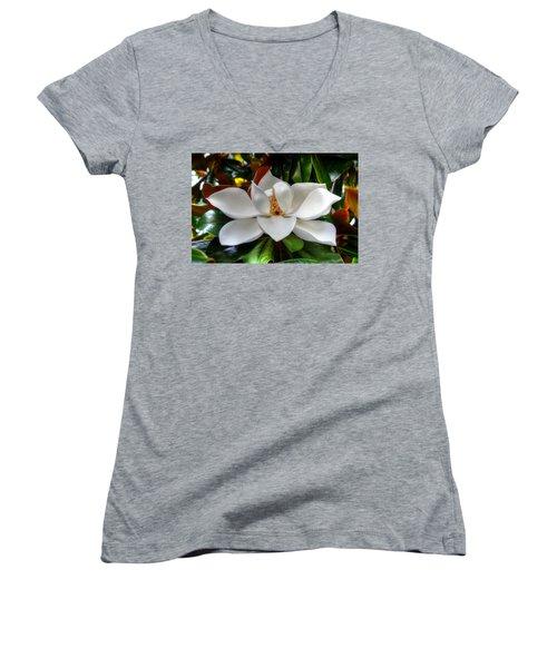 Magnolia Bloom Women's V-Neck T-Shirt