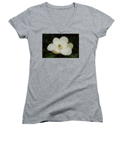 Magnolia Blossom 5 Women's V-Neck (Athletic Fit)