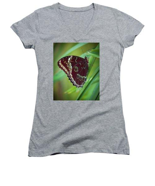 Majesty Of Nature Women's V-Neck T-Shirt (Junior Cut) by Karen Wiles