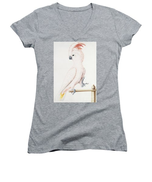 Major Mitchell's Cockatoo Women's V-Neck T-Shirt (Junior Cut) by Nicolas Robert