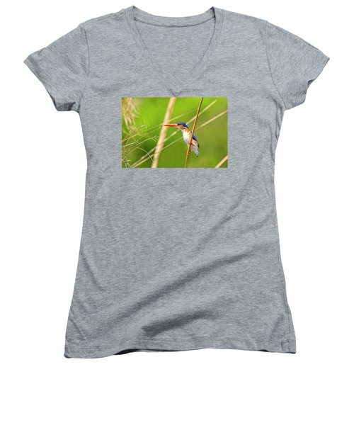 Malalchite Kingfisher Women's V-Neck