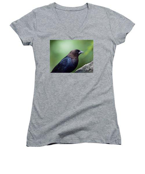 Male Cowbird Women's V-Neck T-Shirt