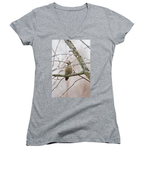 Male Downey Woodpecker Women's V-Neck (Athletic Fit)