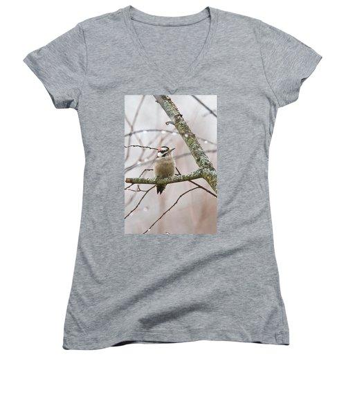 Male Downey Woodpecker Women's V-Neck T-Shirt