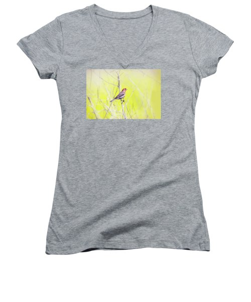 Male Finch On Bare Branch Women's V-Neck (Athletic Fit)