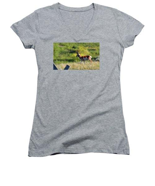 Male Pronghorn Women's V-Neck T-Shirt