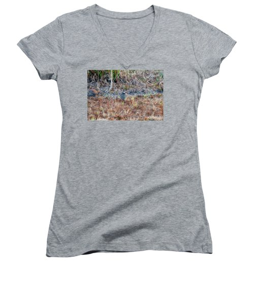 Male Quail In Field Women's V-Neck (Athletic Fit)