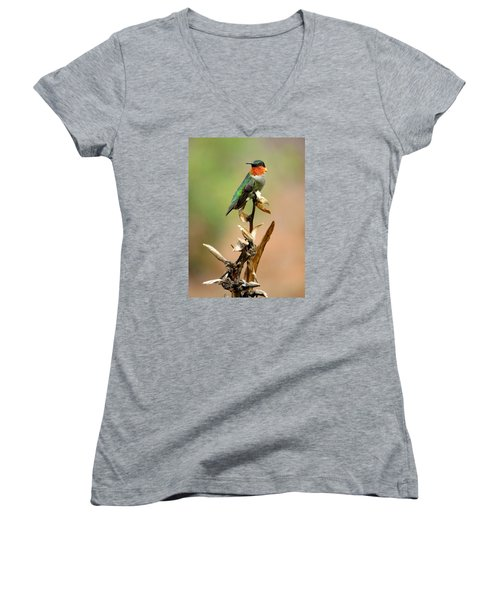 Women's V-Neck T-Shirt (Junior Cut) featuring the photograph Male Ruby Throat Hummingbird by Phyllis Beiser