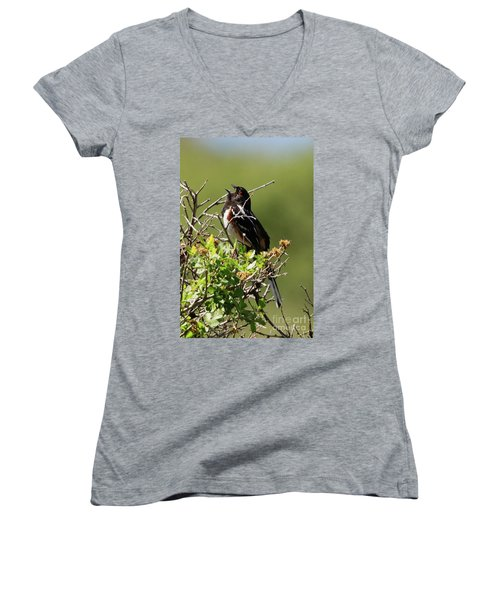 Male Spotted Towhee Women's V-Neck (Athletic Fit)