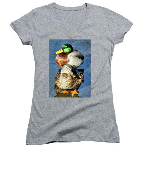 Mallard Couple Women's V-Neck T-Shirt